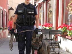 Rotary-klubi-autasustab-noori-politseiametnikke_JuliaEesalujaMacho.jpg