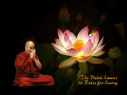 VAATA-VIDEOT-Dalai-Laama-18-juhist-eluks.png