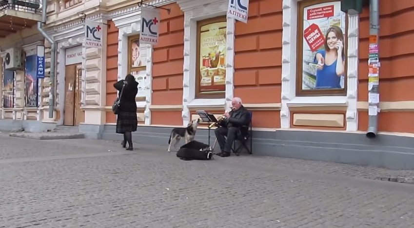 VAATA LIIGUTAVAT VIDEOT! Head teod sünnivad sõnadeta
