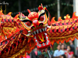 Chinese-New-Year-1_.jpg