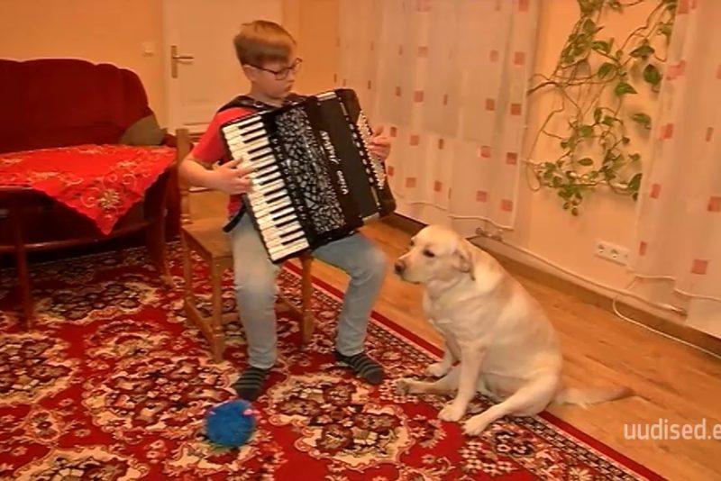 VAATA VIDEOT! Nunnu labradori retriiver laulab kõva häälega enda lemmiklauludele kaasa
