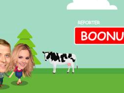 Reporter boonus