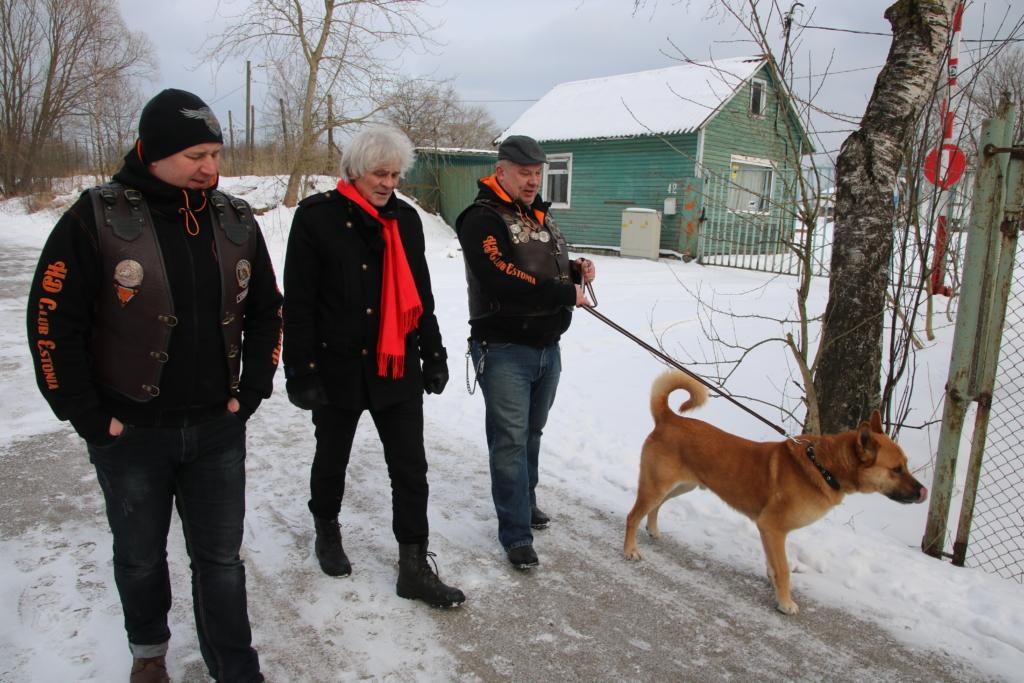 VIDEO! HÄSTI, EESTI! Harley-mehed käisid tsiklisõidu vahele loomade varjupaiga koeri jalutamas