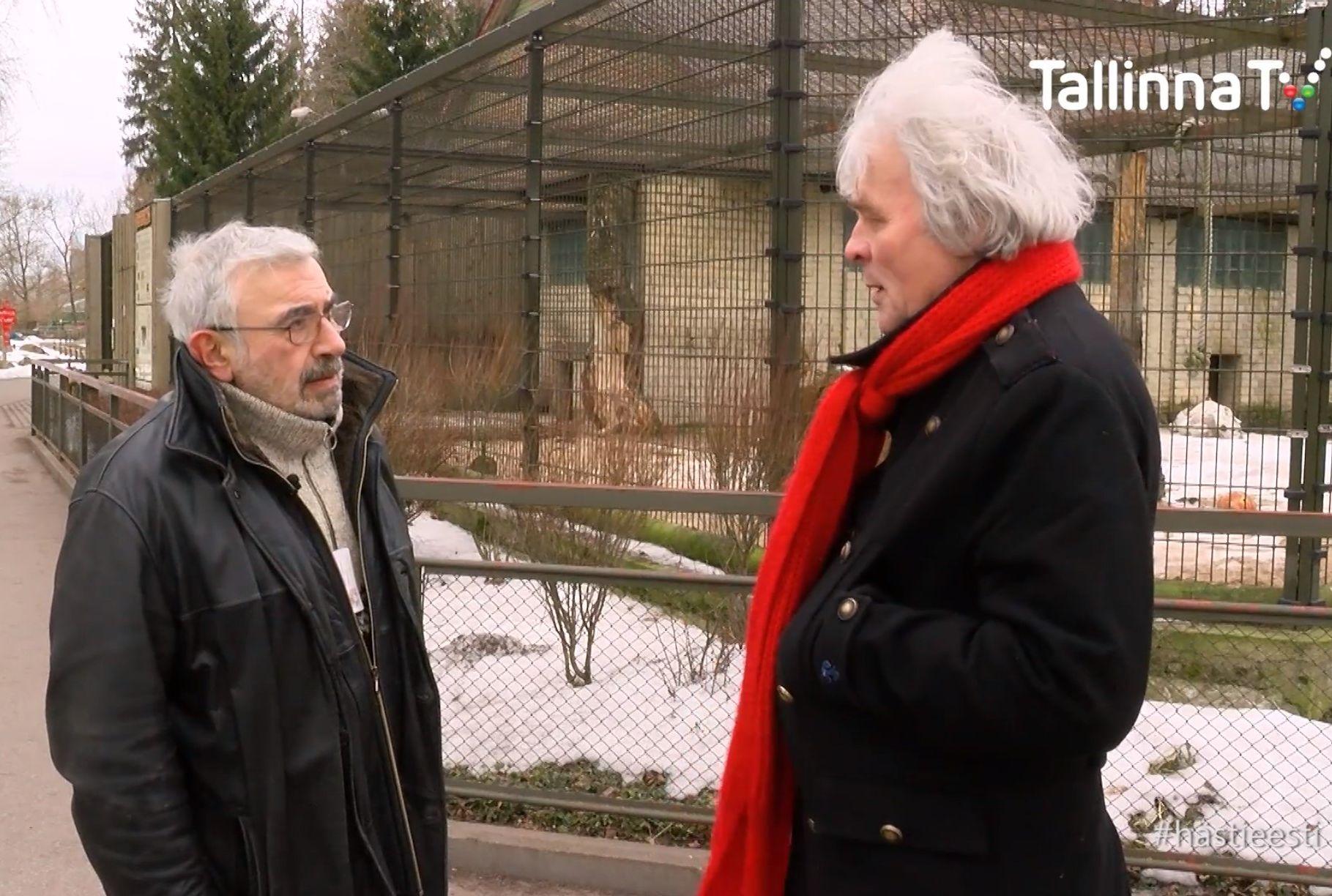 VIDEO! Aleksei Turovski hinnangul on tiiger kõikvõimas