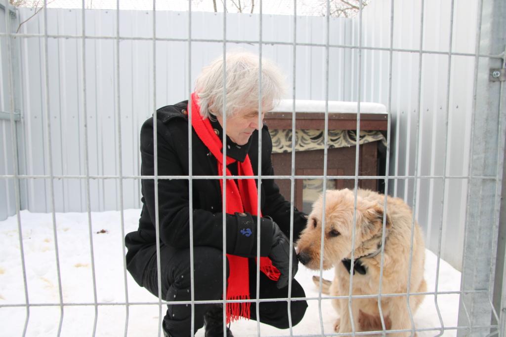 VIDEO! Tallinna loomade varjupaigast on uue kodu leidnud tuhatkond looma