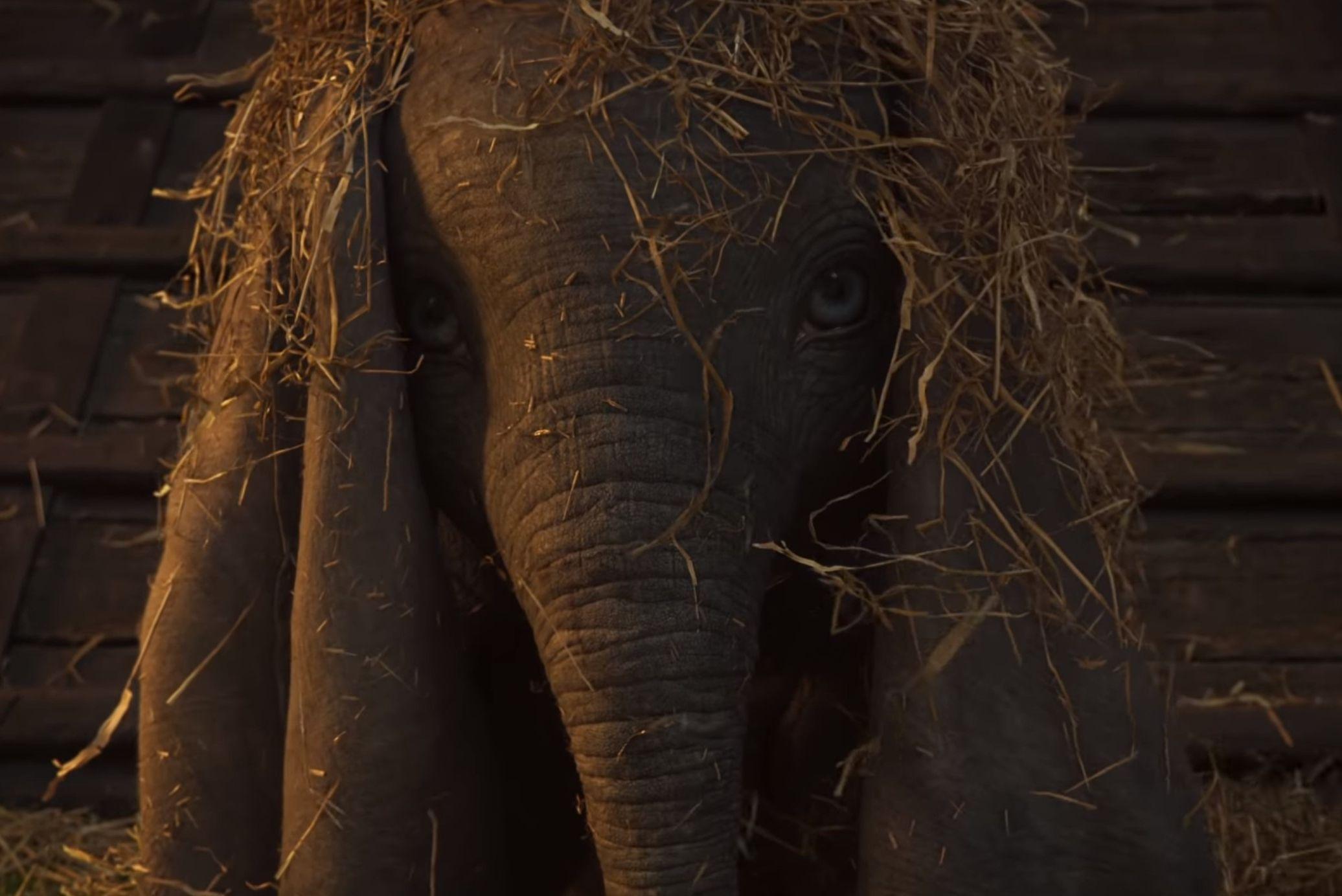 """VIDEO! Disney väljastas """"Dumbo"""" esimese reklaamklipi"""