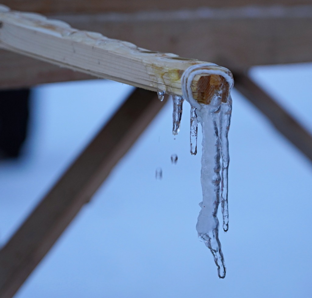 Jõgeva talvetrall (5)