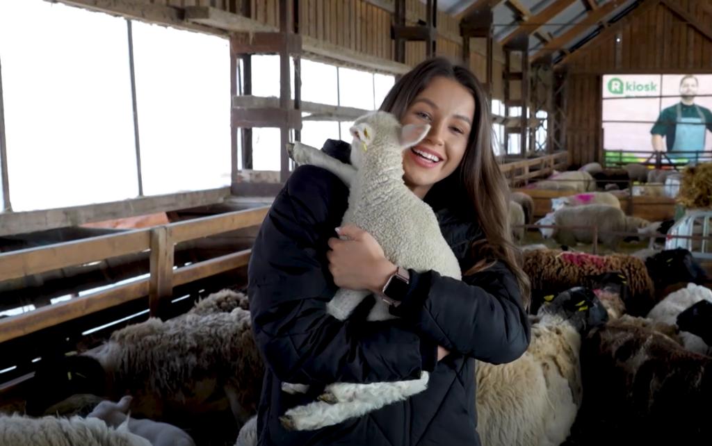 VIDEO I Nunnumeeter laes! Järvamaa lambatalus on käes kevadine beebibuum